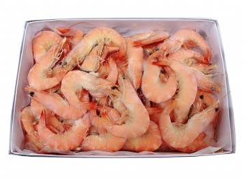 Cooked Sweet Whole Prawns 31/40 (Frozen)