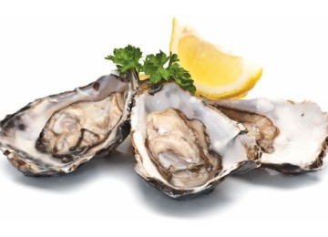 Live Canadian Oyster